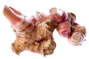 Mengenal Rahasia dan Khasiat Lengkuas bagi Kesehatan Tubuh - Ssstt, ada Resep Ayam Goreng Lengkuasnya !!!
