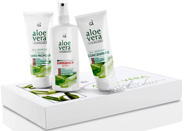 Evde Aloe Vera Bakımı İpuçları ve Kullanım Alanları