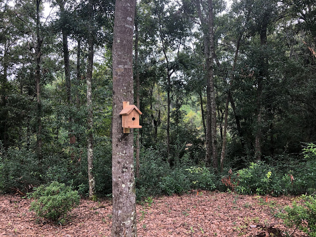 Simple birdhouse in the woods | The Lowcountry Lady