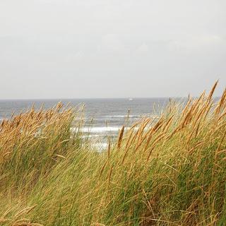 holland-meer