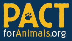 PACT for Animals has a military foster program