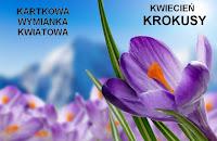 http://misiowyzakatek.blogspot.com/2017/04/kwiatowa-wymianka-kartkowa-krokusy.html