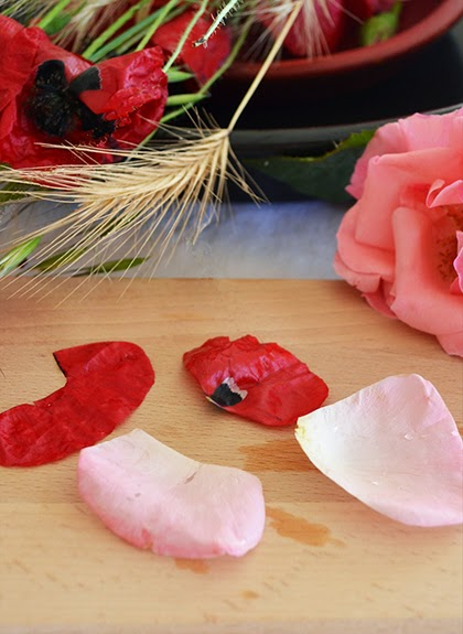 Poppy and rose petals to make syrup - shewandersshefinds.com
