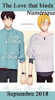 http://mangaconseil.com/manga-manhwa-manhua/digital-manga-guild/boy%27s-love/the-love-that-binds/