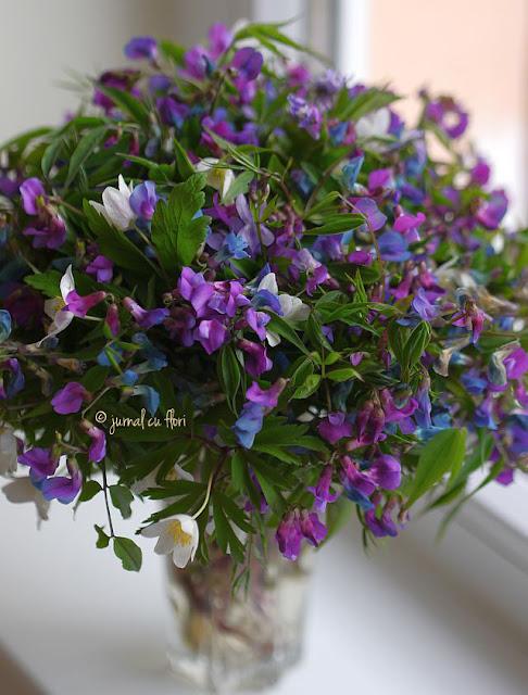 #florisalbatice #buchetmov #transilvania #wildflowers #deacasa