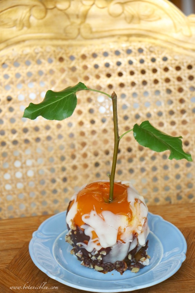 add a real tree twig as a stem for a double chocolate caramel apple