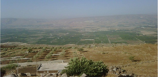 Kebun Kurma di Baisan ( Beit sheian) - berbagaireviews.com