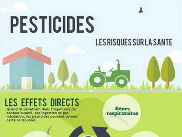 Les effets des pesticides sur notre santé