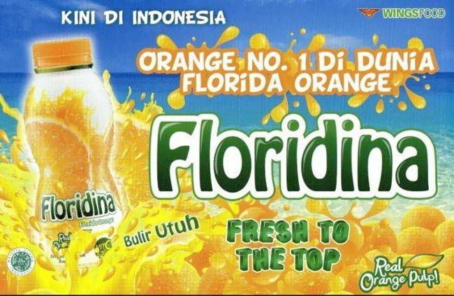 Iklan Flordina