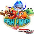 Fish Catch Shooting Game is a New Kind of Gambling