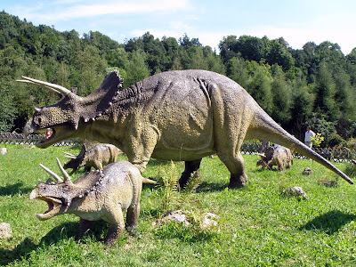 Triceratops | facts | size