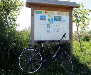 Parc Natural dels Aiguamolls de l'Empordà en bicicleta per Teresa Grau Ros