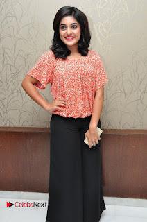 Actress Niveda Thomas Pictures at Gentleman Success Meet  0008
