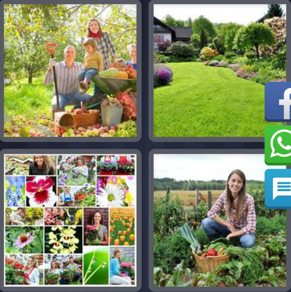 4 Fotos 1 Palabra Campo Familia Mujer Flores Frutas Solucion 6 Letras 4 Fotos 1 Palabra Respuestas Actualizado 2020