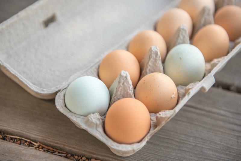Eggs - Ioanna's Notebook