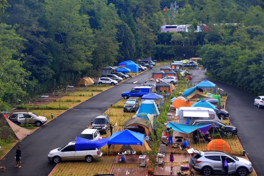 南投仁愛 - 翠峰農場露營地卡爾小鎮 - 前進合歡山的最佳基地營 :: 阿舍的精彩生活