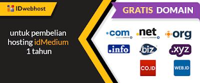 hosting dan domain murah