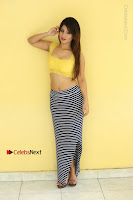 Cute Telugu Actress Shunaya Solanki High Definition Spicy Pos in Yellow Top and Skirt  0483.JPG