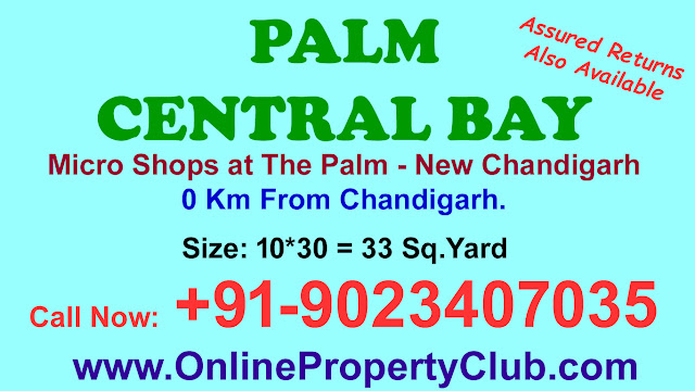 PALM CENTRAL BAY, Microshops Manohar Singh and Company