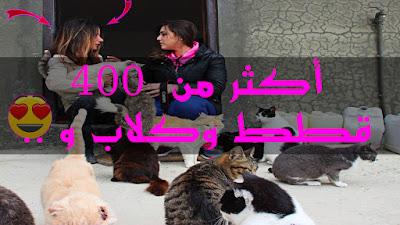 آمرأة تحقق حلمها .. قطط الشوارع والكلاب و حيونات أخرى جمعتهم تحت سقف واحد بطنجة