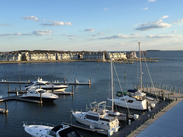 Marina view from Hilton Garden Inn at Kent Island in Maryland