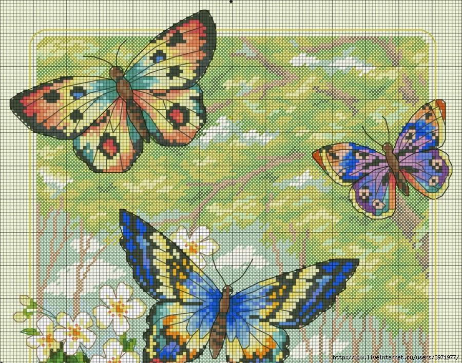 Hobby lavori femminili ricamo uncinetto maglia for Schemi punto croce farfalle