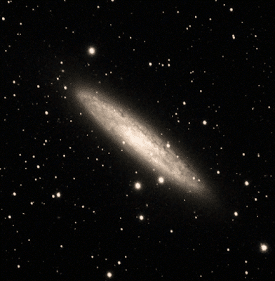NGC 253 - Imaged Michael Petrasko and Muir Evenden of Insight Observatory.