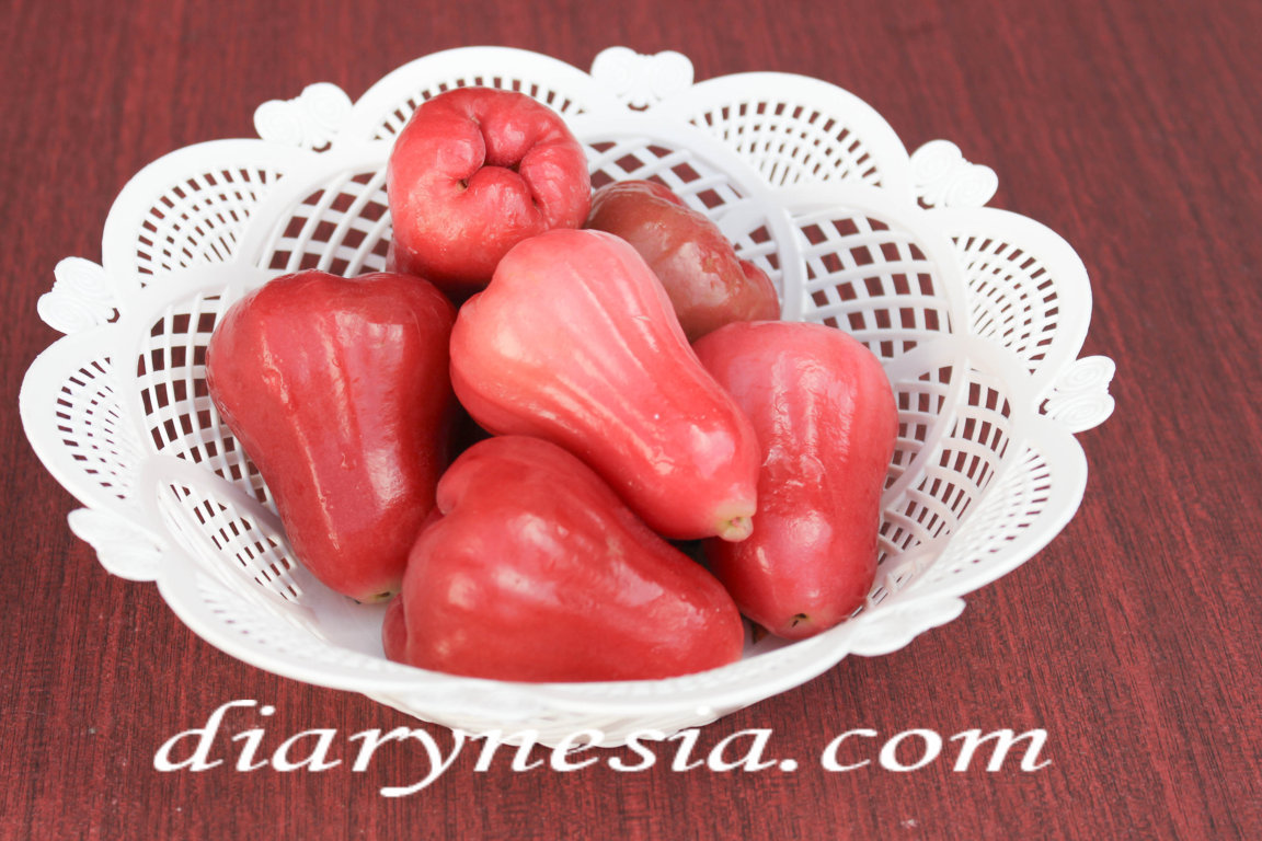 best time to eat water guava, description water guava, guava tree information, diarynesia