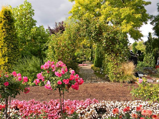 Ogrody w Starym Dworze pełne są kwiatów.