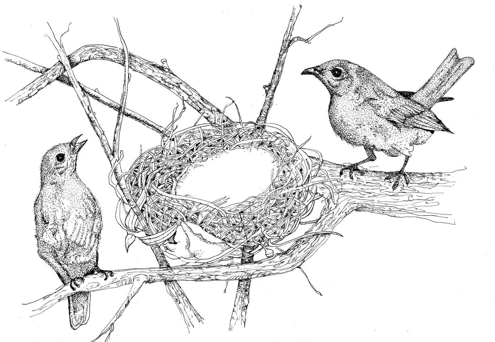 Julie Townsend Studio: Two Little Birdies Sitting In A Tree