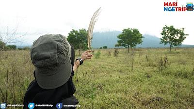 Taman Nasional Baluran Mari NGEtrip