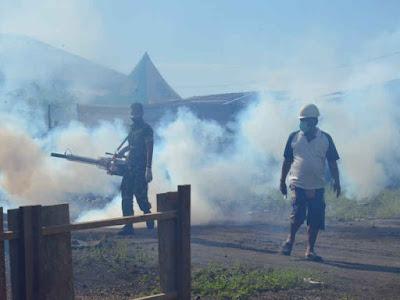 Satgas Yonif 731 Laksanakan Fogging di Gamsungi