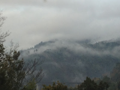 By E.V.Pita / Canyons of River Sil / Fall 2012 / Cañones del río Sil