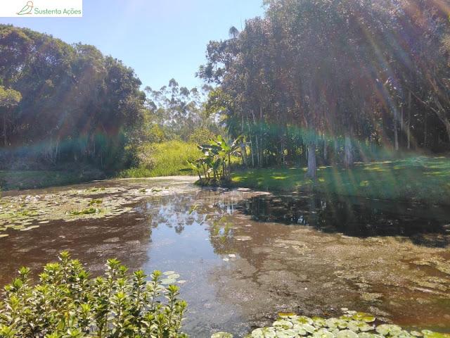 Lago no Jardim Botânico de Timbó