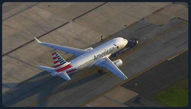 Volo Las Vegas-Los Angeles investito da uno stormo di uccelli e deve rientrare in emergenza