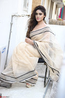 Sony Charishta in Brown saree Cute Beauty   IMG 3599 1600x1067.JPG