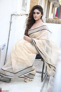 Sony Charishta in Brown saree Cute Beauty   IMG 3599 1600x1067.JPG
