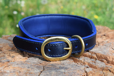 wide collar for large size dogs made in blue leather with solid brass oval buckle