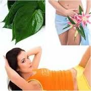 Cara Yang Baik Mempersempit Vagina Dengan Daun Sirih