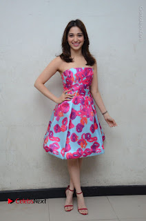 Actress Tamanna Latest Images in Floral Short Dress at Okkadochadu Movie Promotions  0167.JPG