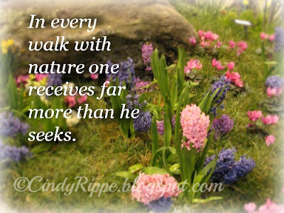Spring Flowers, John Muir Nature quote, Hyacinths, Botanic Gardens, American Horticultural Society, Florals-Family-Faith, Cindy Rippe