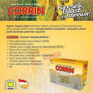 CORRIN - PESTISIDA  -ORGANIK- &- AGENS- HAYATI -085231271500