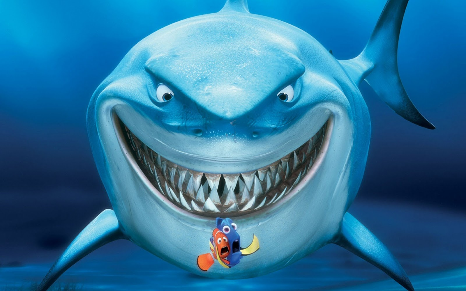 Shark hd wallpapers | Movies Songs Lyrics