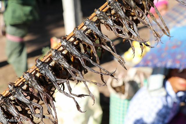 Dried frogs in Demawso market, Loikaw