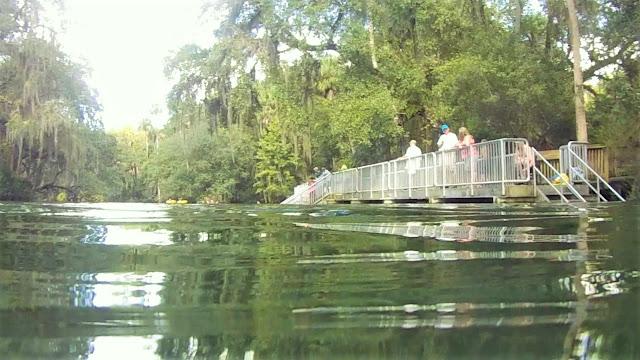 Blue Spring State Park, Florida USA