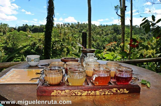 Selección-tés-Bali