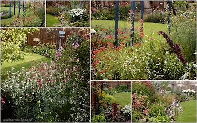 Summer in the back garden 2003