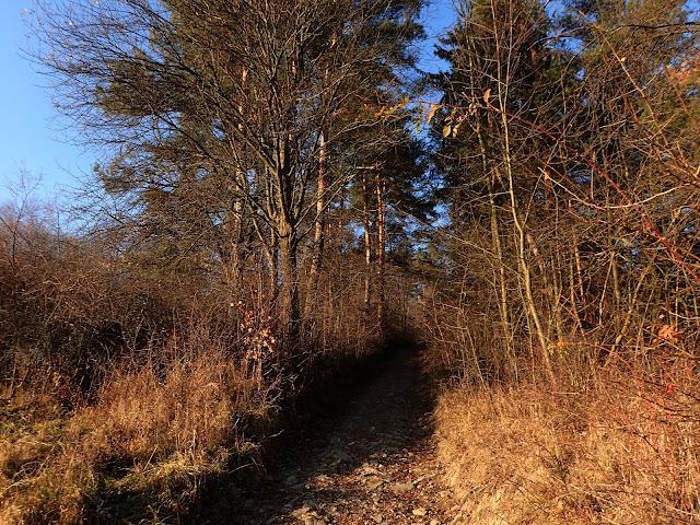 Niebieski szlak na Luboń Wielki