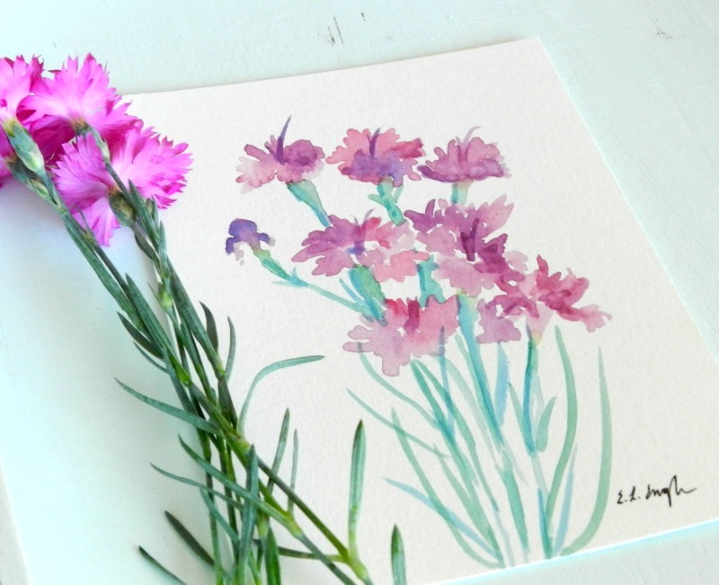 Original Watercolor Dianthus Flower Paintings by Elise Engh of Grow Creative.