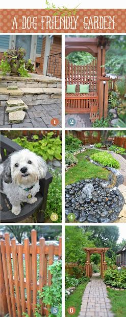 lisa orgler design dog friendly